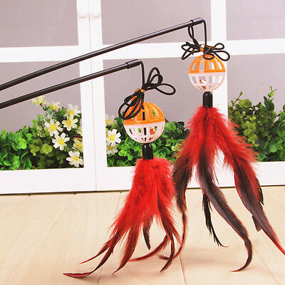 Funny Catten Pet Teaser Feather Wire Chaser Pet Toy Wand Beads Play Pop