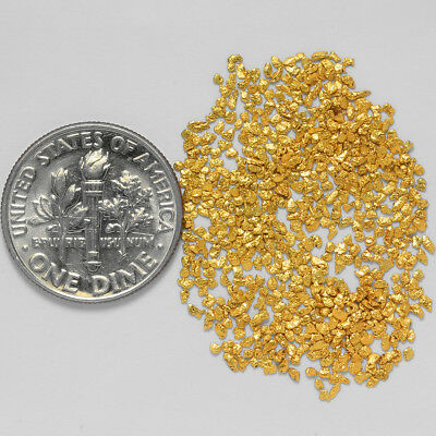 0.5987 Gram Alaskan Natural Gold Nuggets - (#21020) - Hand-Picked Quality