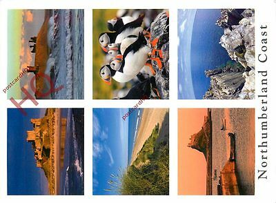 Picture Postcard- Northumberland Coast (Multiview)