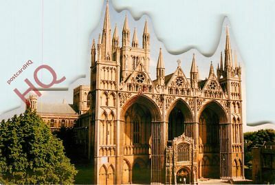Picture Postcard- Peterborough Cathedral