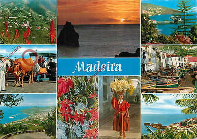 Picture Postcard; Madeira (Multiview)