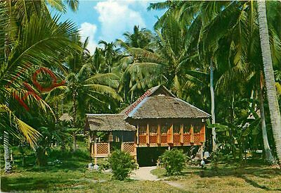 Picture Postcard~ Singapore, Malay Kampong