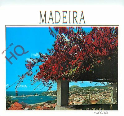 Picture Postcard: Madeira, Funchal, Western View