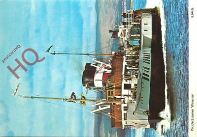 Picture Postcard, PADDLE STEAMER WAVERLEY