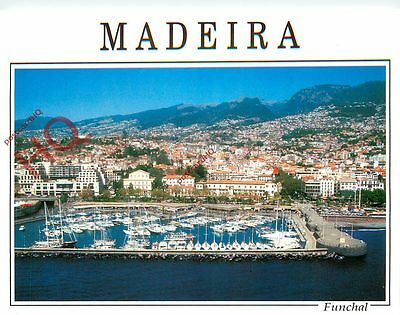 Picture Postcard-:Madeira, Funchal