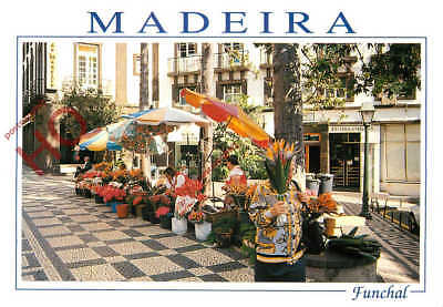 Picture Postcard:-Madeira, Funchal, Flower Girls