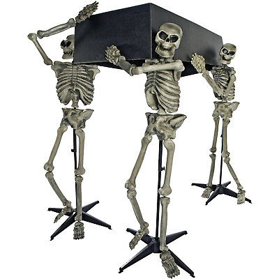 Skeleton Pall Bearers with Coffin Halloween Decoration