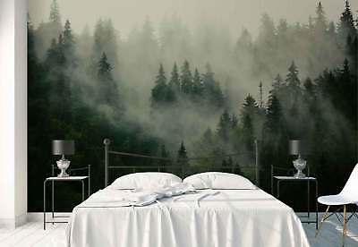 Forest Fog Nature  Photo Wallpaper Wall Mural (FW-1116)