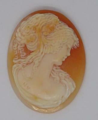 **vintage Carved Shell Lady Cameo (22932)**
