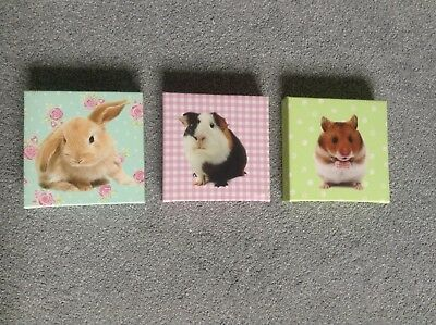 Cute Animal Canvas X 3