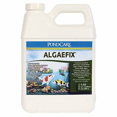 API Pondcare Algaefix Alage Control Pond Water Treatments Clean & Clear 32-Ounce