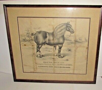 1886 Blyth Ben Shire Horse Champion Sire Janesville WI Advertisement Sign Poster