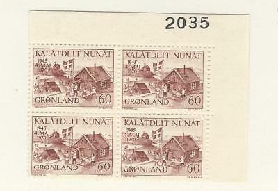Greenland, Postage Stamp, #76 Block Mint NH, 1970 Flag