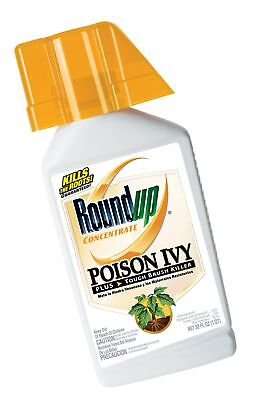 Roundup Poison Ivy Plus Tough Brush Killer Concentrate 32-Ounce 1