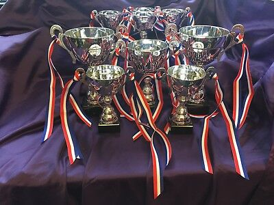 LARGE UNIVERSAL SILVER/METAL TROPHY WITH RIBBONS AND A MARBLE BASE Award XXLarge