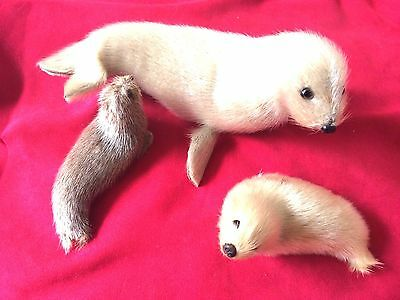 Vintage 3 Pc Seal Plush Family 1980's Beautiful Collectible Rare Karlsson Svensk