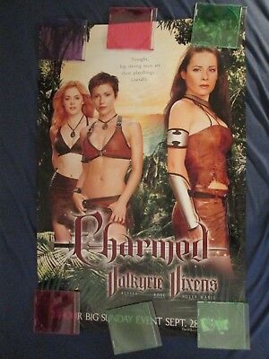 Charmed Valkyrie Vixens Poster 24 x 36