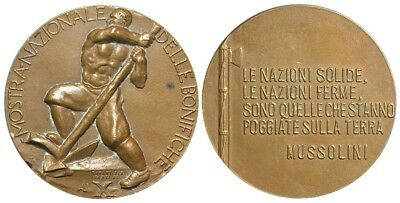 M- Italy, Medal A. X (1932), Water Reclamation