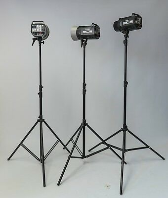 2 Elinchrom RX 300 flash heads, 1 RX 600 flash head and 3 Elinchrom Light stands
