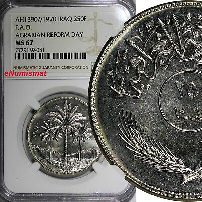 Iraq AH1390//1970 250 Fils F.A.O. NGC MS67 REFORM DAY TOP GRADED COIN  KM# 130