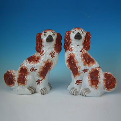 Pair Staffordshire Russet Spaniels with Curly Tails
