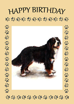 Bernese Mountain Dog Standing Dog Great Birthday Greetings Note Card
