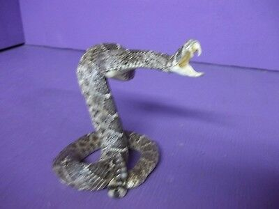 Real Western rattlesnake taxidermy mount tanned hide man cave stuffed craft