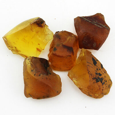 15.56 ct Natural Burmite Amber Rough Lot 100 million years old / S5305