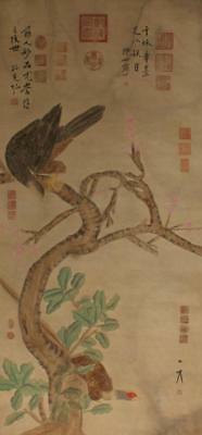 Chinese Old Lang Shining Scroll Painting Flower birds 91""