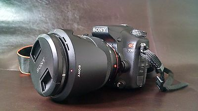 Sony SLT-A77VQ α (alpha) 24.3 MP Digital SLR Camera Sony SAL1650 16-50mm F2.8
