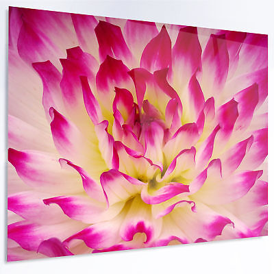 Design Art 'Smooth Purple White Flower Petals' Photographic Print on Metal