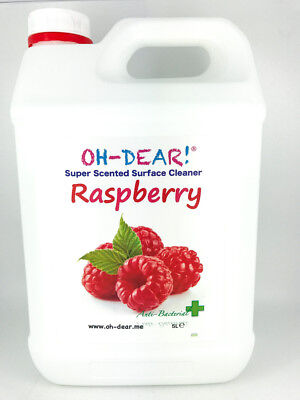 Surface Cleaner 5L Concentrate Raspberry