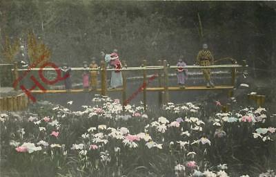Picture Postcard- Oriental Postcard, People and Flowers