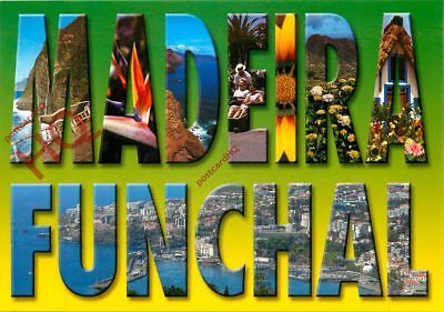 Picture Postcard::Madeira, Funchal