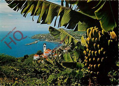 Picture Postcard:-Funchal (Madeira) - Western View