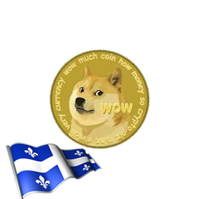 Inst Delivery 1000 Dogecoin (DOGE) Crypto currency -Anonymous No Id req