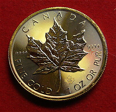 Canada 2009 Maple Leaf 1 oz. .9999 Fine Gold Coin~dated~~2016
