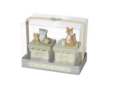 Grasslands Road Owl Love You Forever First Tooth & Curl Keepsake Box Set 470925