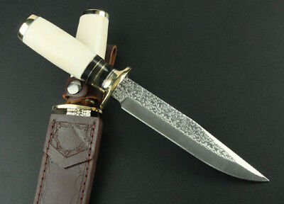Sharp Hunting Survival Combat Camping Bowie Rescue Utility Knife