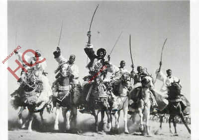 Picture Postcard: Hausa Horsemen At Faya, Chad, 1941 (Repro)