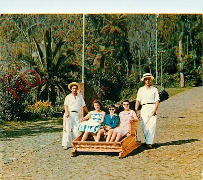 Picture Postcard:;Madeira, Funchal, Carro Do Monte, Toboggan