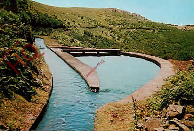Picture Postcard; Madeira, Levada, Canal