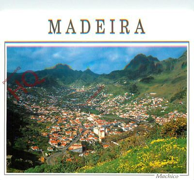 Picture Postcard; Madeira, Machico