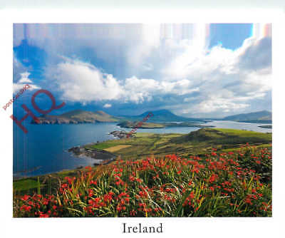 Picture Postcard; Ireland, Ring Of Kerry From Valentia Island