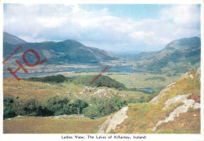 Picture Postcard, The Lakes Of Killarney, Ladies View