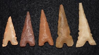 5 nice Sahara Neolithic Tidikelt types projectile points, diverse lithics/color