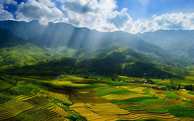 Album synthesize and copy digital image beautiful bewitching of terraced fields