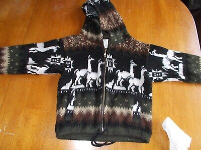 Toddler's Andino's Wool Sweather (Size 4)