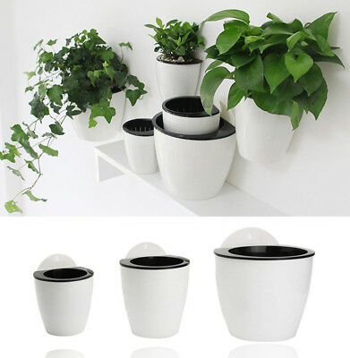 Self-watering Plant Flower Pot Wall Hanging Planter House Garden White top