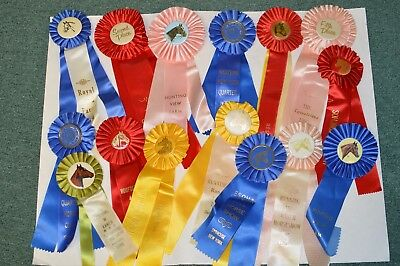 Vintage 1970's-90's Lot 15 Horse Show Ribbons Pins Awards Rosettes Equestrian